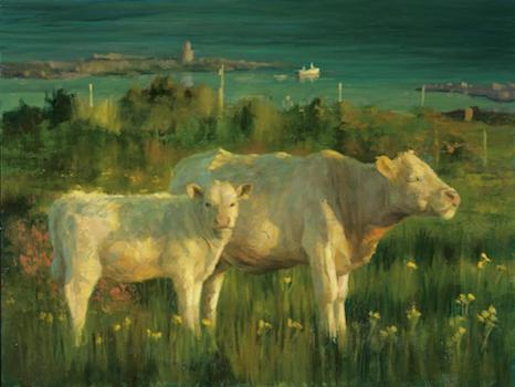cows pip todd warmoth